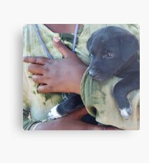 Puppy - Mahabalipuram, India Metal Print