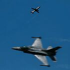 F16 Double Take by Andy Thomson Photography Art