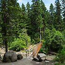 Wooden foot bridge over a mountain river by Adam Nixon