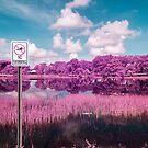 No Swimming by Adam Nixon