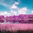 Lake view by Adam Nixon