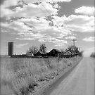 Lookout Road  by Pamela Hubbard