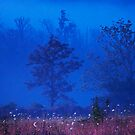 Tennessee Morning by Mary Ann Reilly