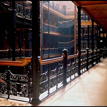 Bradbury Building by jdempsey