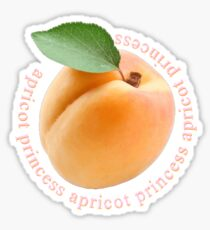 Rex Orange County - Apricot Princess Sticker