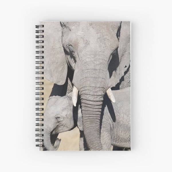 Mother Elephant With Baby Under Trunk Spiral Notebook