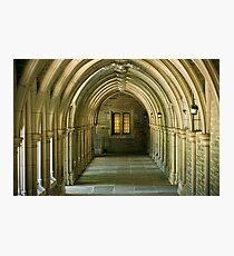 Princeton  Photographic Print