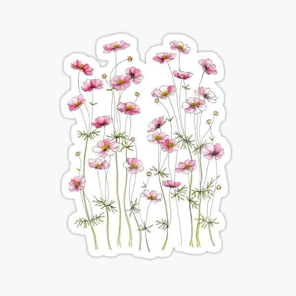 Pink Cosmos Flowers Sticker