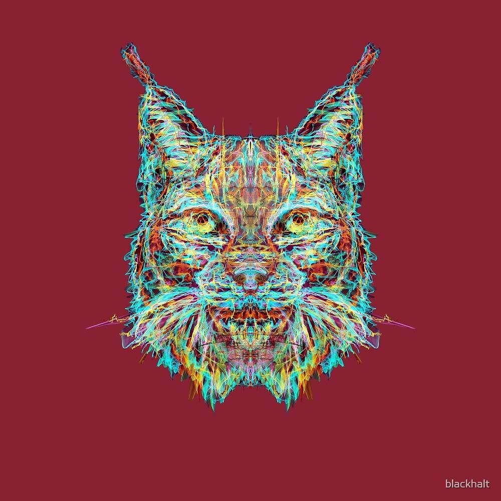 Lynx by blackhalt