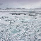 Nearing the North Pole by Marylou Badeaux
