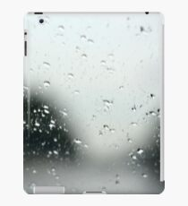 Looking through the Window Pane iPad Case/Skin