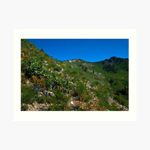 Mountain Blend Art Print