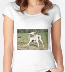 Goat Animal Pet Farm Women's Fitted Scoop T-Shirt