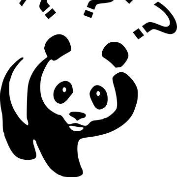 WTF Panda Funny Sayings Memes Quotes by decentdesigns