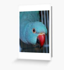 Razor Greeting Card