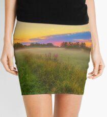 Early Morning 4 Mini Skirt