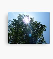 Above us only sky.... Canvas Print