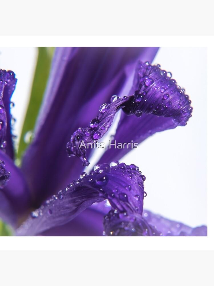 Untitled by plasticflower