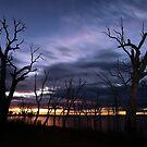 Toolondo Sunrise by John Davies
