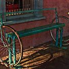Bicycle Bench by Linda Gregory