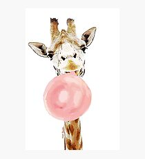 Pink Bubblegum Giraffe  Photographic Print
