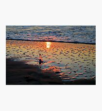 Morning Message Photographic Print