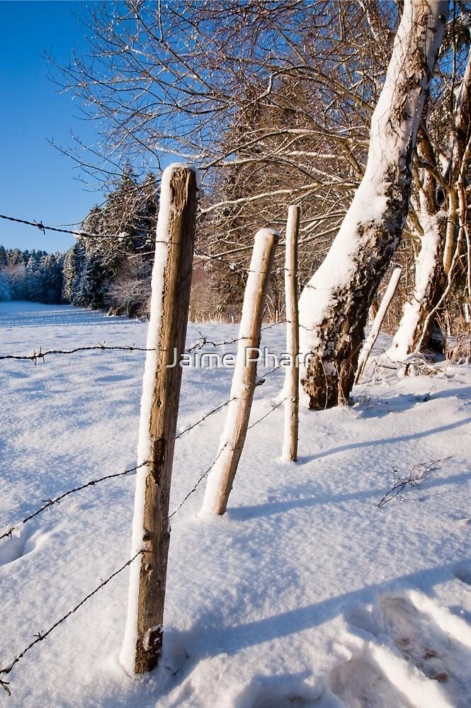 Rural winter scene by Jaime Pharr