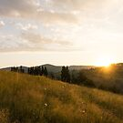Hiking Fragrant Mountain Meadows in the Fall by Georgia Mizuleva