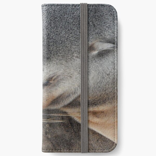 Sleeping Seal on the Shore iPhone Wallet
