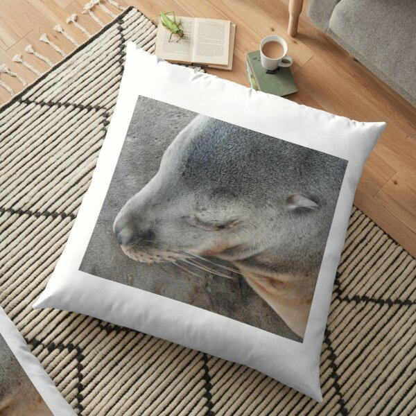 Sleeping Seal on the Shore Floor Pillow