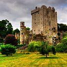 Blarney Castle by Tom Gomez