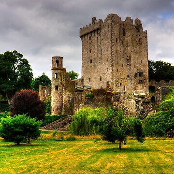 Blarney Castle by tomg