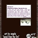 iii-Anatomy of a Balls-cover_artbyangela by artbyangela