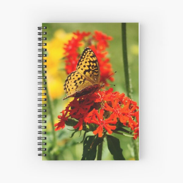 Gold Winged Butterfly on an Orange Flower Spiral Notebook