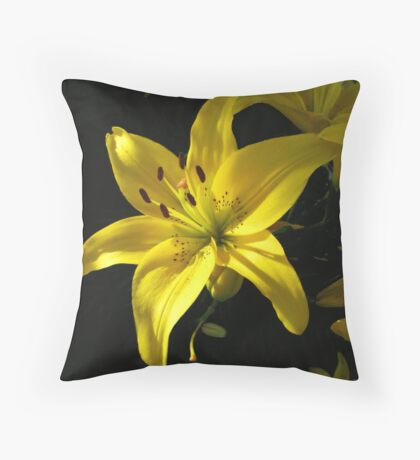 Golden Sunshine Throw Pillow