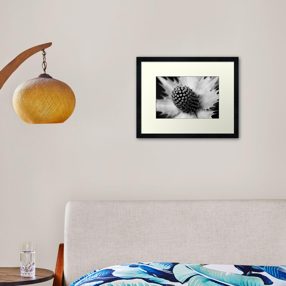 Heart of the White Explosion in Monochrome Framed Art Print