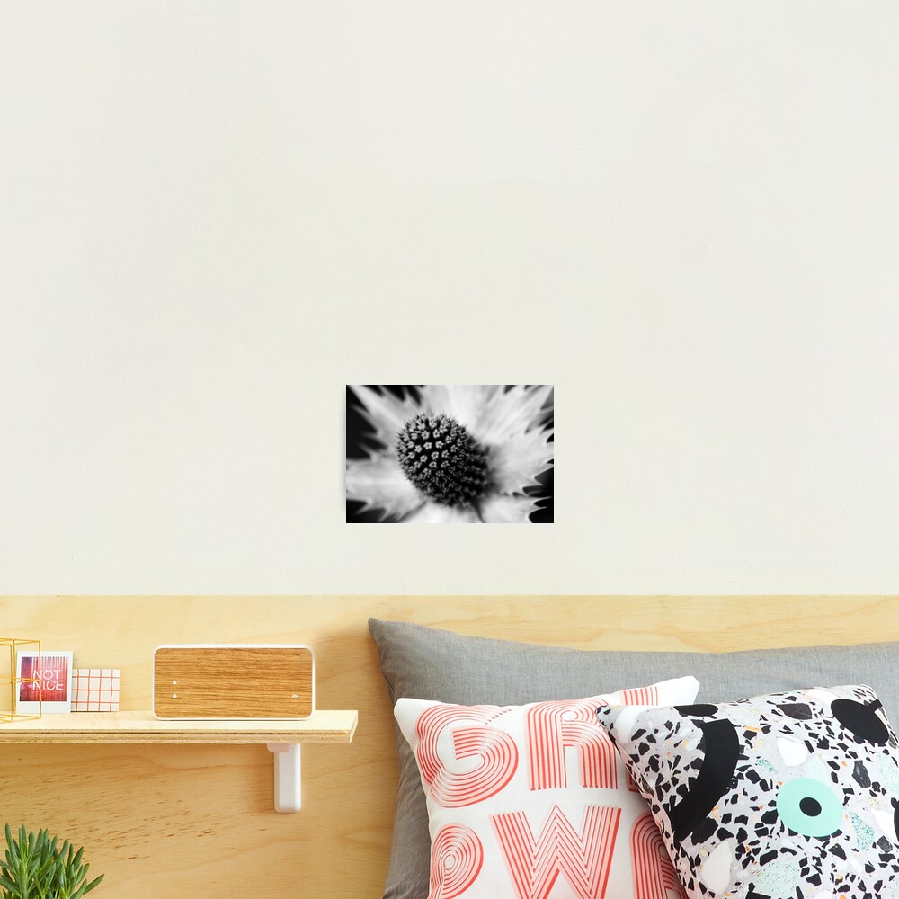 Heart of the White Explosion in Monochrome Photographic Print