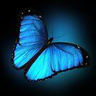 Blauer Schmetterling von Irisangel