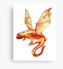 Dragon Salamander Canvas Print