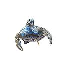 Blue Turtle Design by Kathie Nichols
