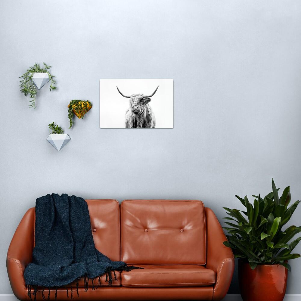 B+W Highland cow Metal Print