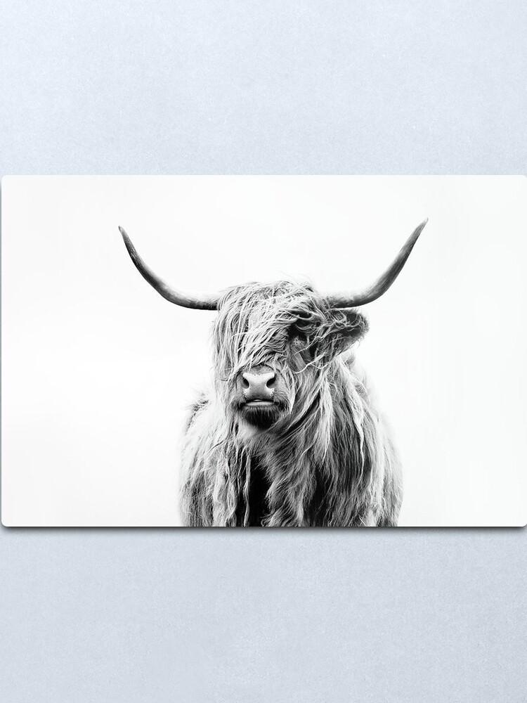 Alternate view of B+W Highland cow Metal Print