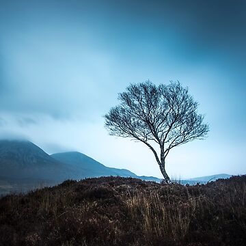 The Guardian of Cuillins by patricemestari