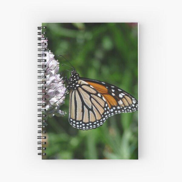 Monarch butterfly on flower head Spiral Notebook