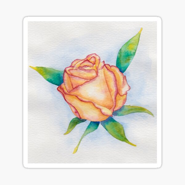 Orange and pink watercolour rose Sticker