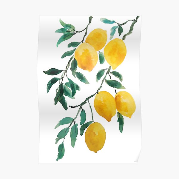 yellow lemon watercolor  Poster