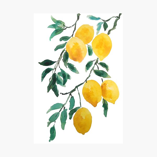yellow lemon watercolor  Photographic Print