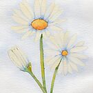 Watercolour daisies by chrissyturley