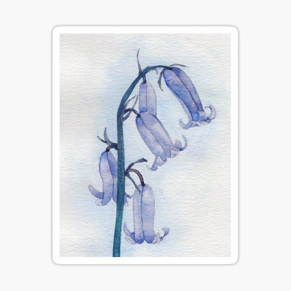 Bluebells watercolour Sticker