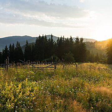 Fragrant Mountain Meadows - by GeorgiaM